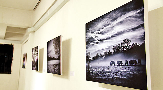Great review on my solo Mindful Photography exhibition in Brunei, Borneo