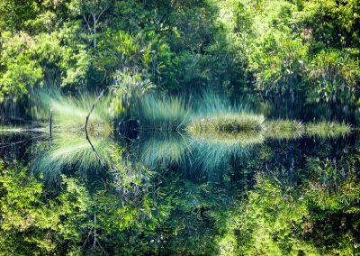 Mindblowing black mirror lake, Borneo