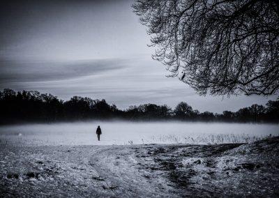 Winterlight series: Winter solitude
